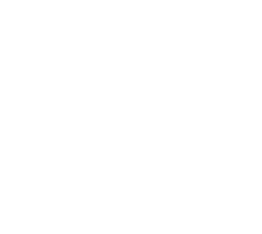 Maggs Law Offices Logo